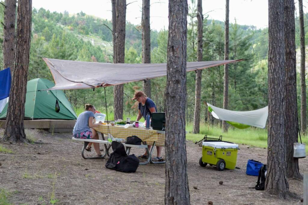 A busy campsite in Blue Bell Campground, Custer State Park.