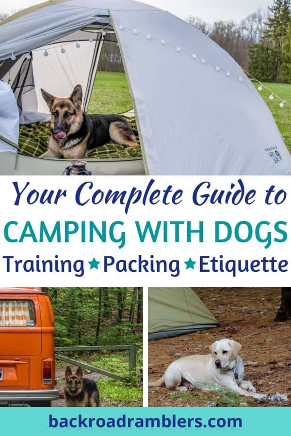 A collage of photos featuring dogs camping. Caption reads: Your Complete Guide to Camping with dogs