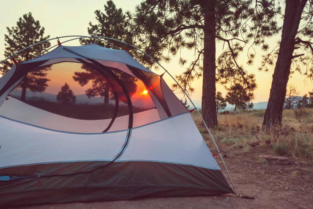 A tent in the sunset next to a tree