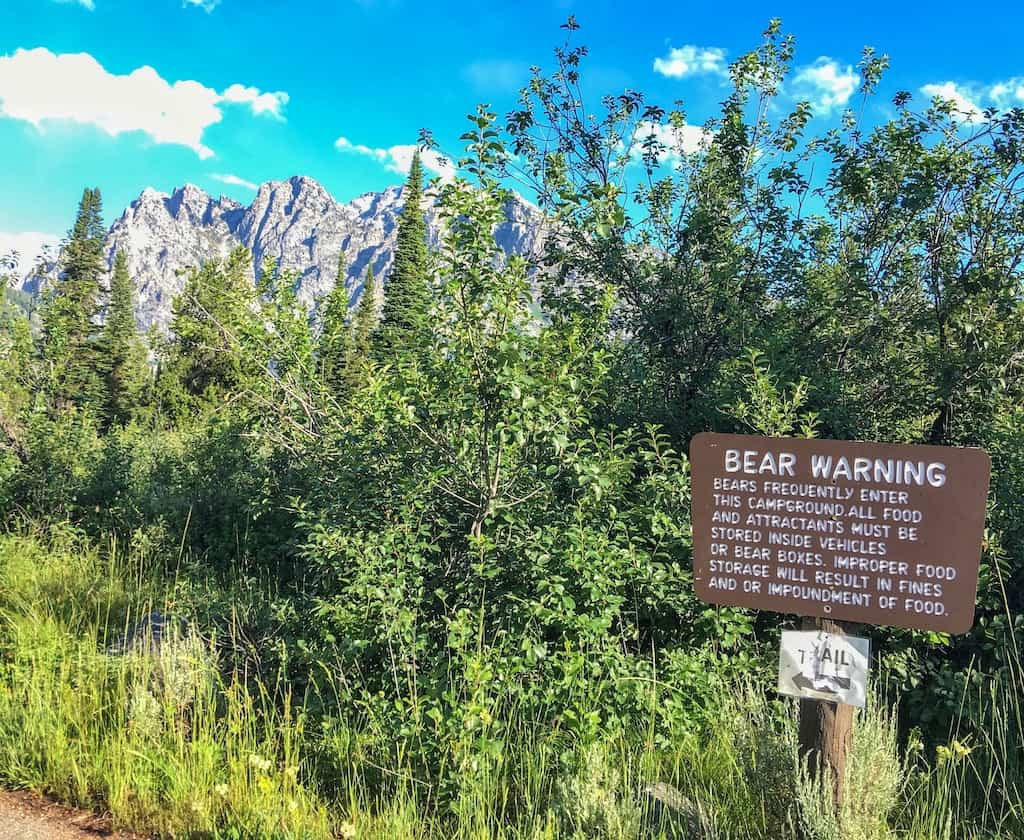 A bear warning sign in Jenny Lake Campground in Grand Teton National Park