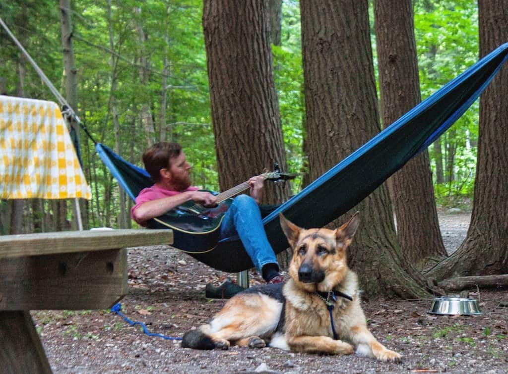 A man sits in a hammock playing the guitar with a German Shepherd at his feet.
