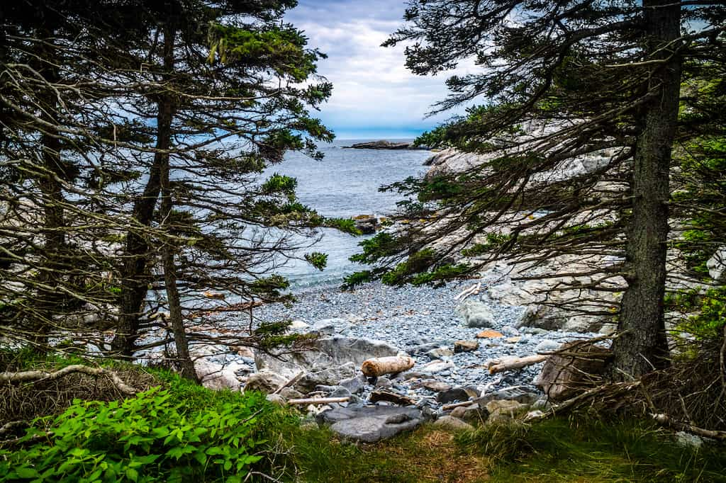 The view from one of the Duck Harbor campsites in Acadia National Park, Maine.