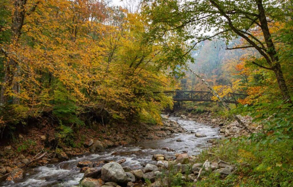 Appalachian Trail footbridge in Bennington VT - autumn foliage