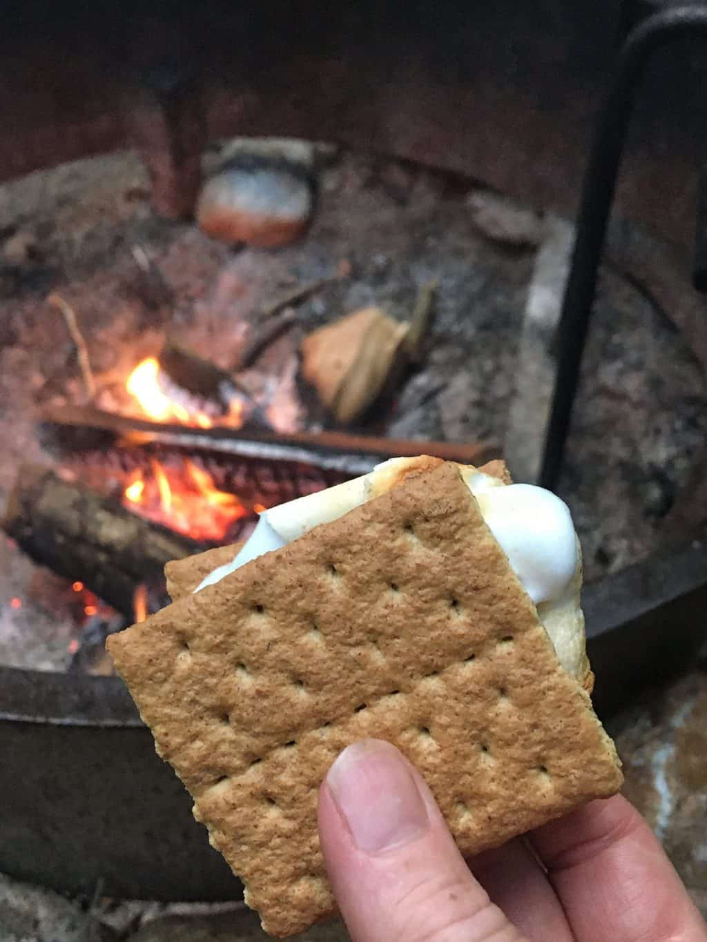 a close up of a s'more near a campfire in Jamaica State Park Vermont