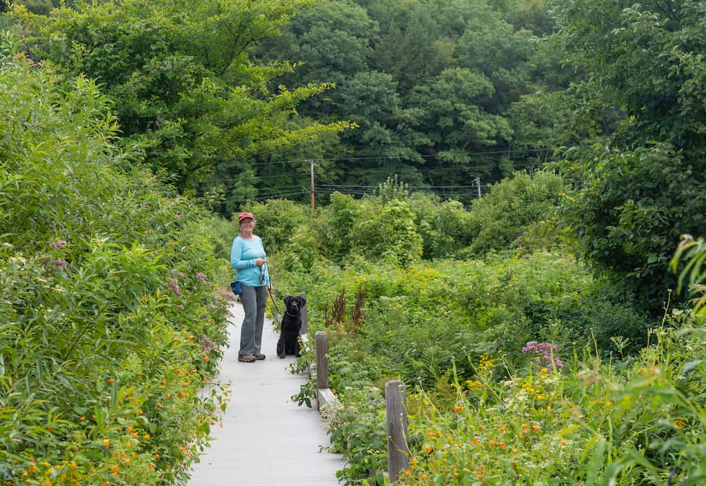 A woman stands with a dog on an overgrown hiking trail in Killington, Vermont