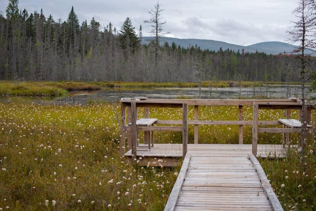 A wooden boardwalk and viewing platform on Moose Bog in Island Pond, VT
