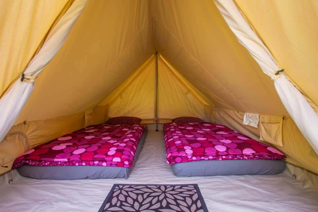 A glamping tent with two air mattresses in it.