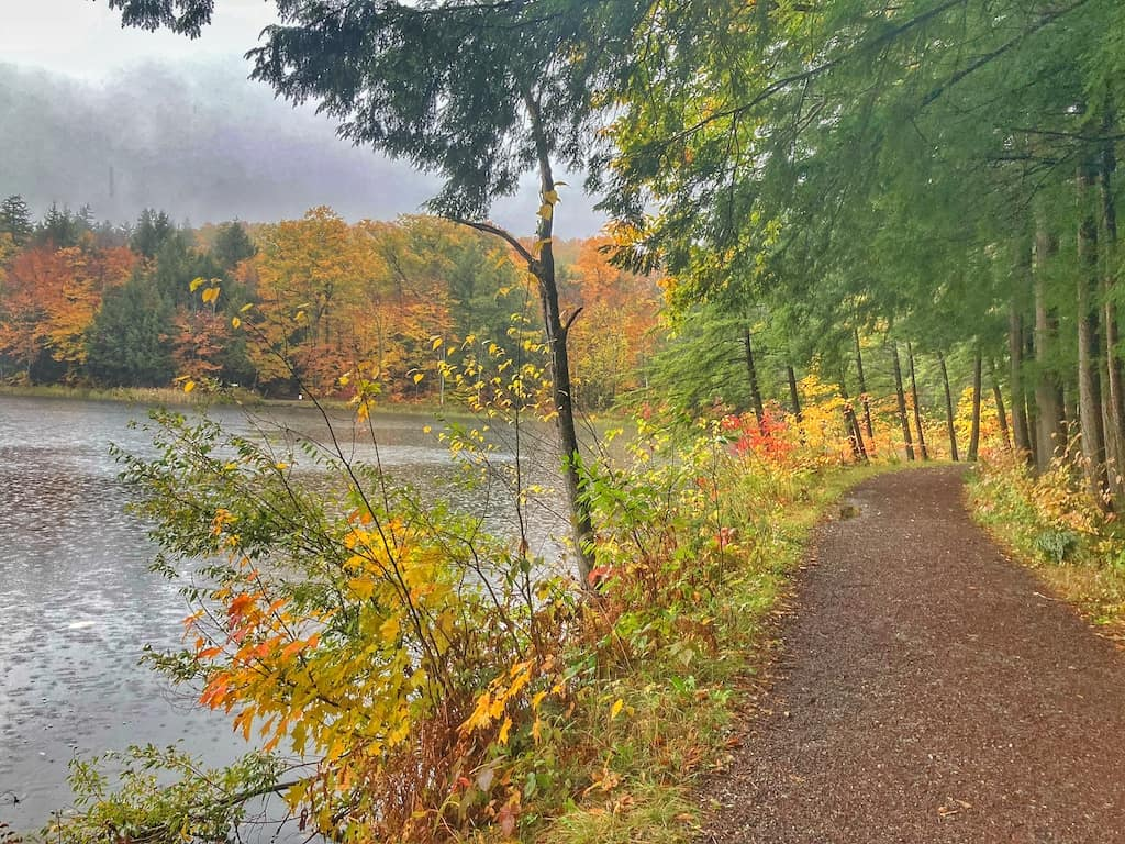 Fall foliage on the Pogue Trail in Woodstock VT