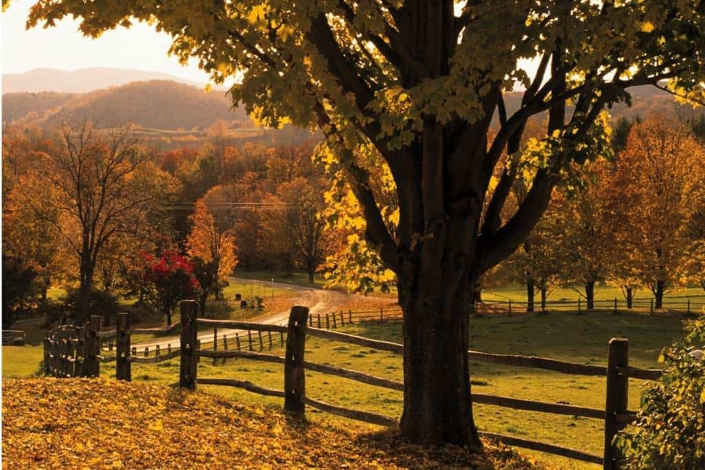 10 Perfect Things to do This Fall in Woodstock and Quechee, Vermont