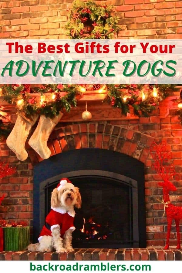 A dog sits in front of a fireplace that has been decorated for Christmas. Caption reads: The Best Gifts for Your Adventure Dogs