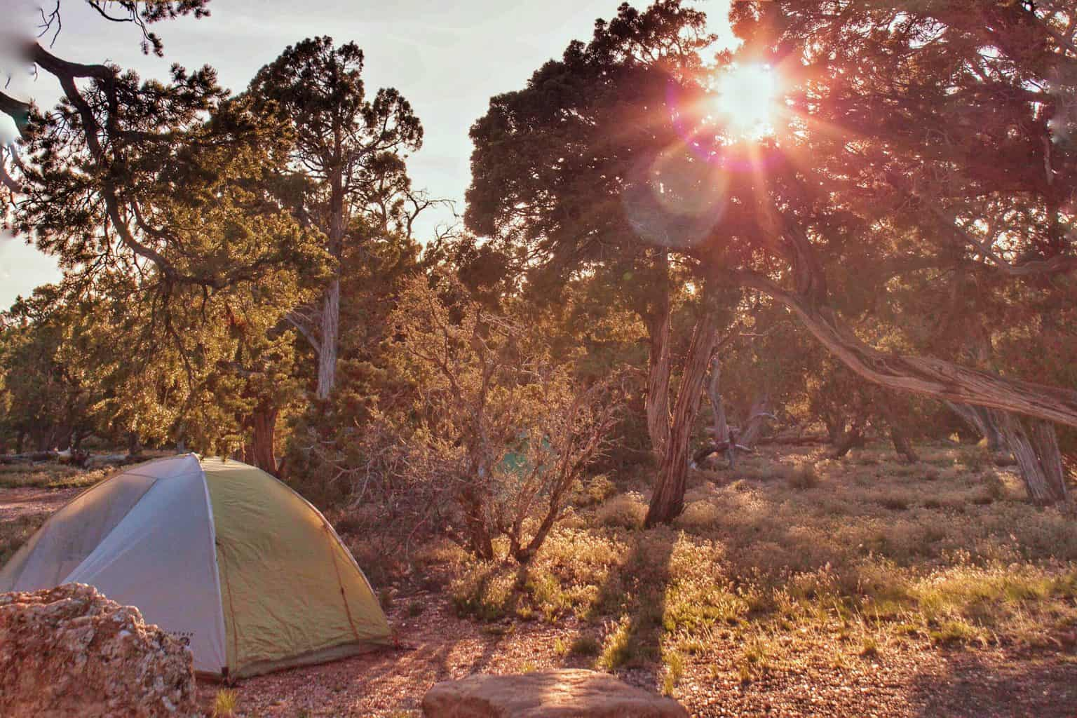 A tent in the woods while the sun is setting.