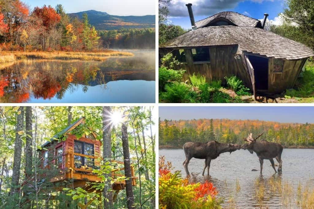 a collage of photos featuring New Hampshire glamping and wildlife