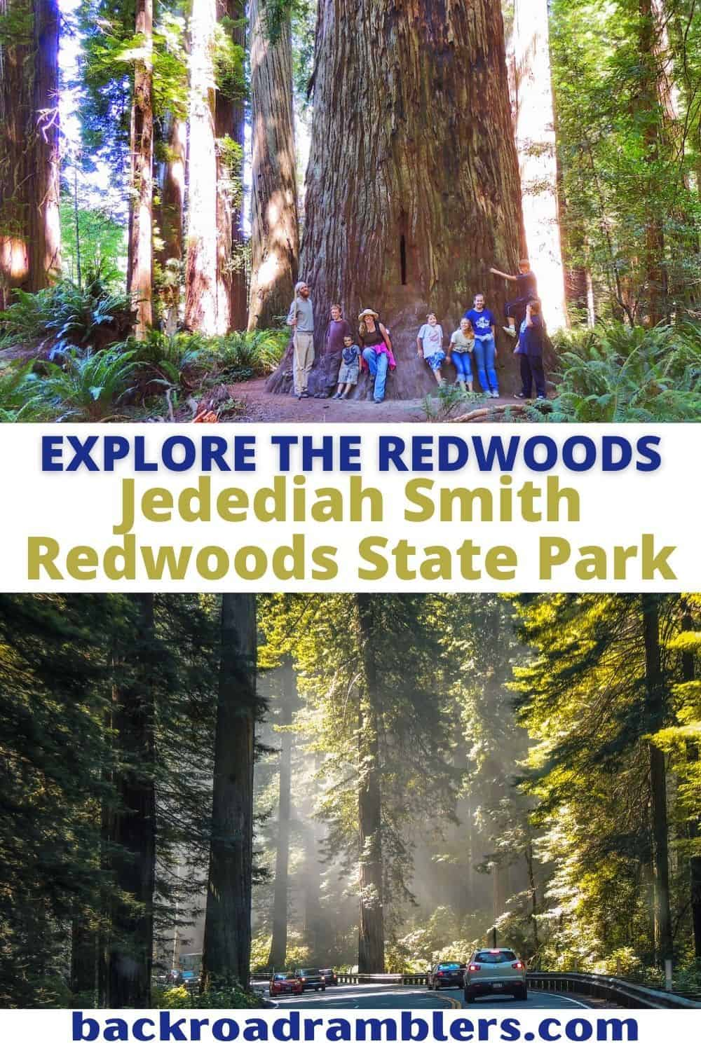 Two photos featuring tall redwood trees. Text overlay: Explore the Redwoods - Jedediah Smith Redwoods State Park