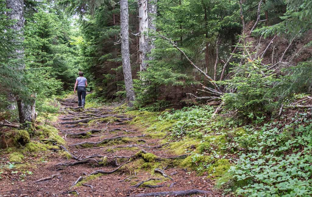 A woman hikes on the Kinne Brook Trail in Fundy National Park, New Brunswick.