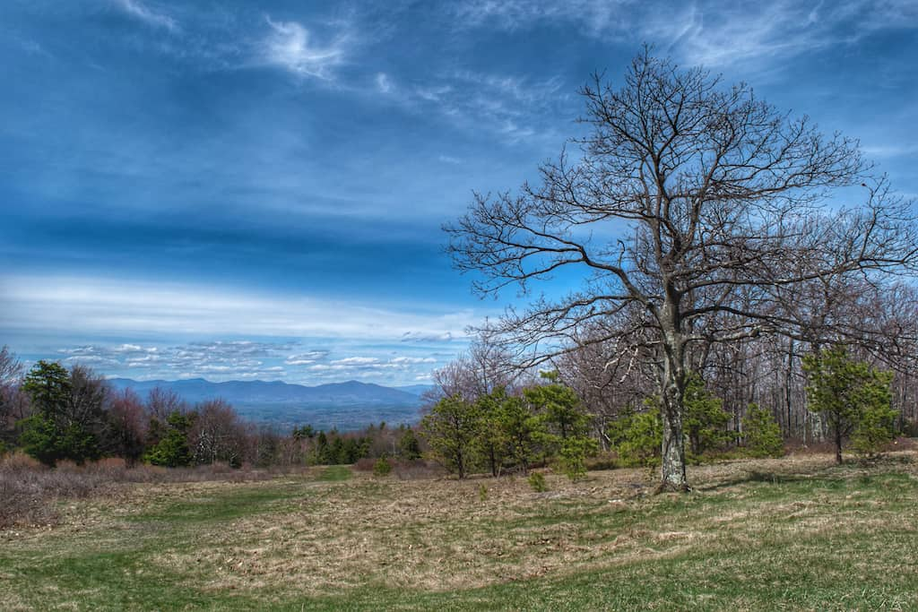 The upper meadows in Minnewaska State Park in New York.
