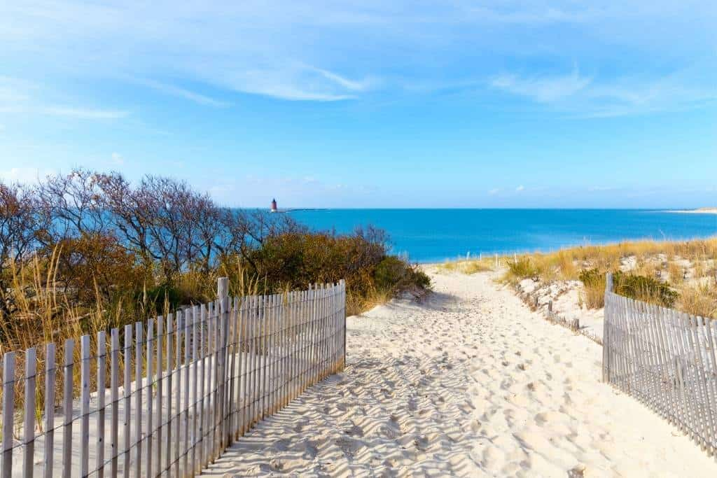 The beach at Cape Henlopen State Park