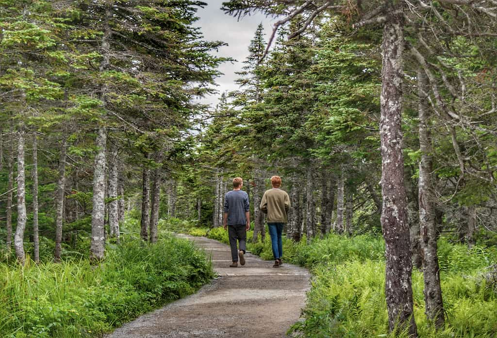 Two young adults walking on a path through the forest in Cape Breton, NS.