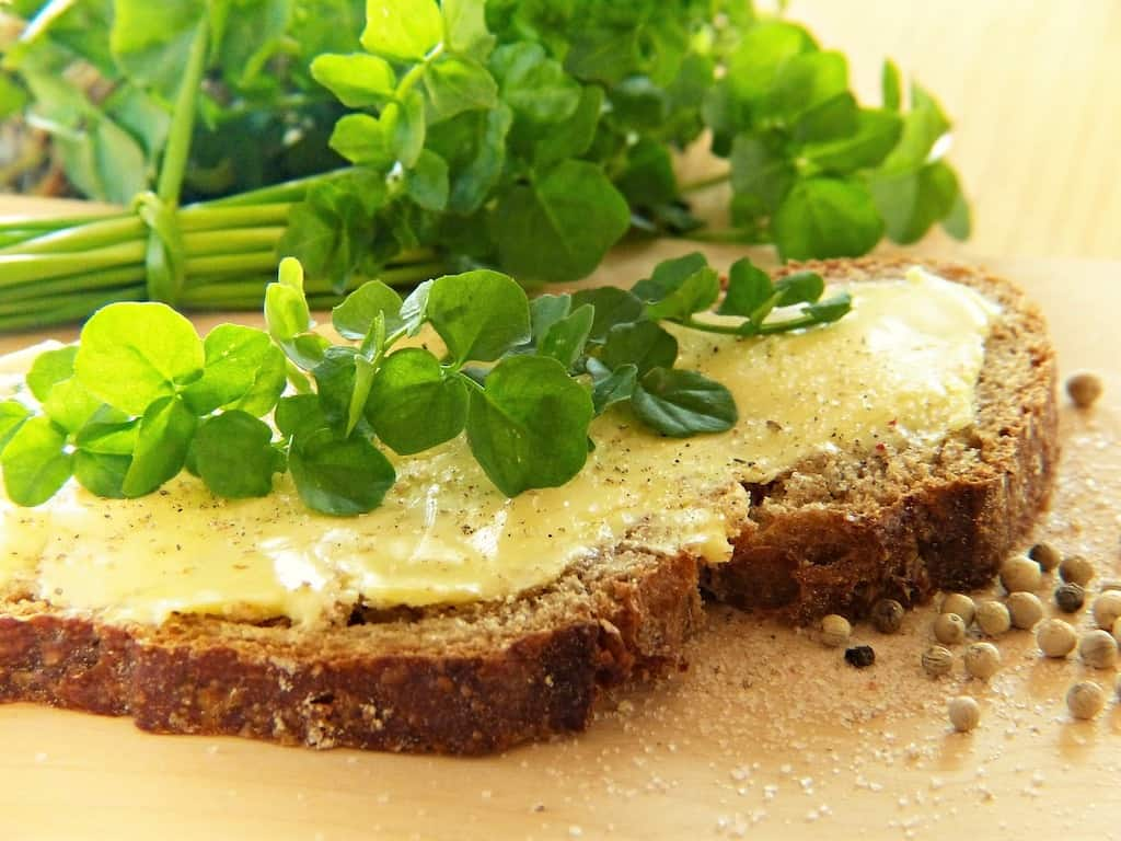 Watercress laying on top of a slice of bread.