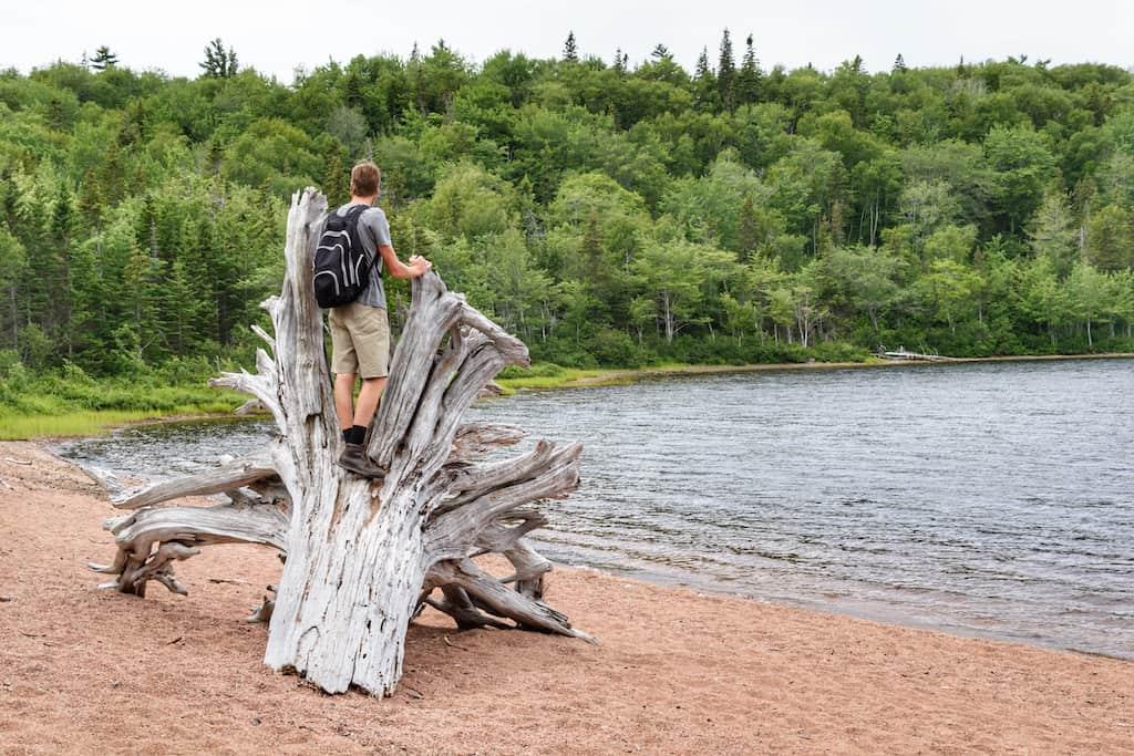 A hiker standing on an old tree stump near Warren Lake in Cape Breton Highlands National Park.