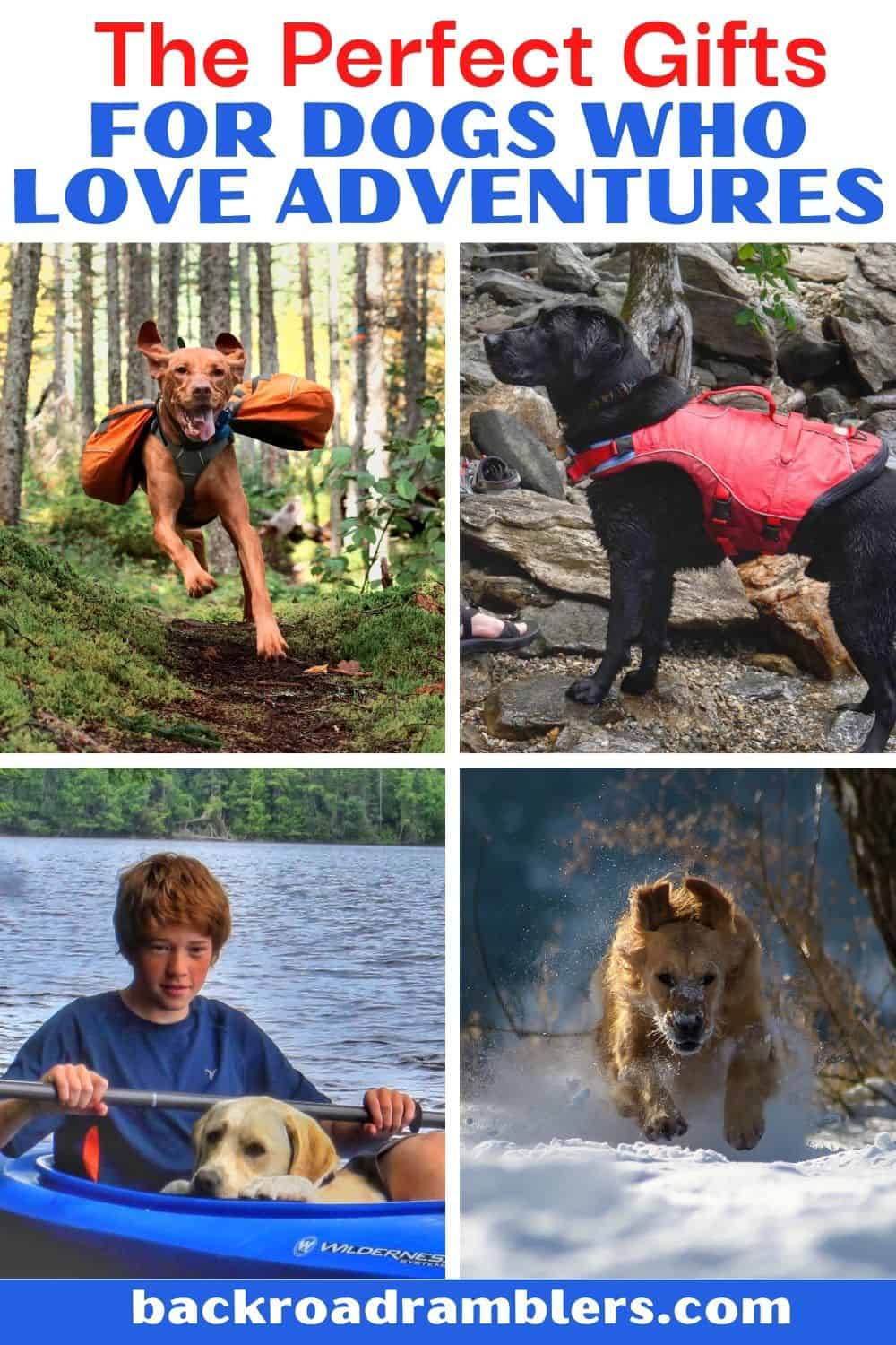 A collage of photos featuring adventurous dogs. Text overlay: The Perfect Gifts for Dogs who Love Adventures