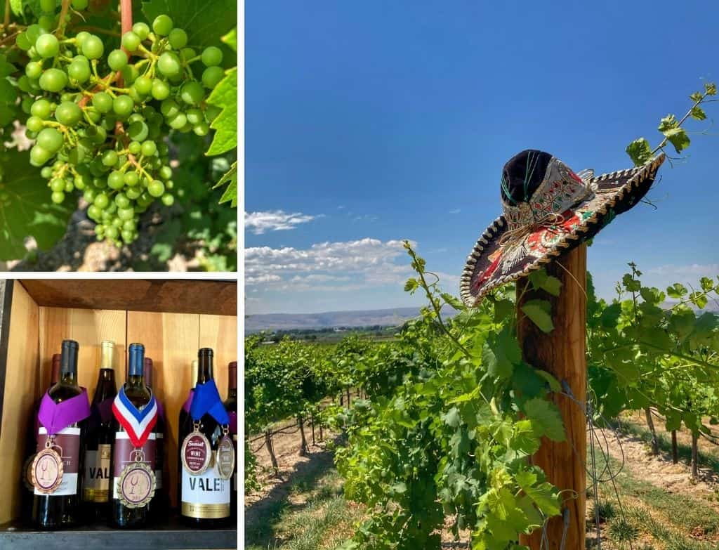 A collage of photos featuring the vineyards and wines of Hat Ranch Winery in Caldwell, Idaho - part of the Sunnyslope Wine Trail.