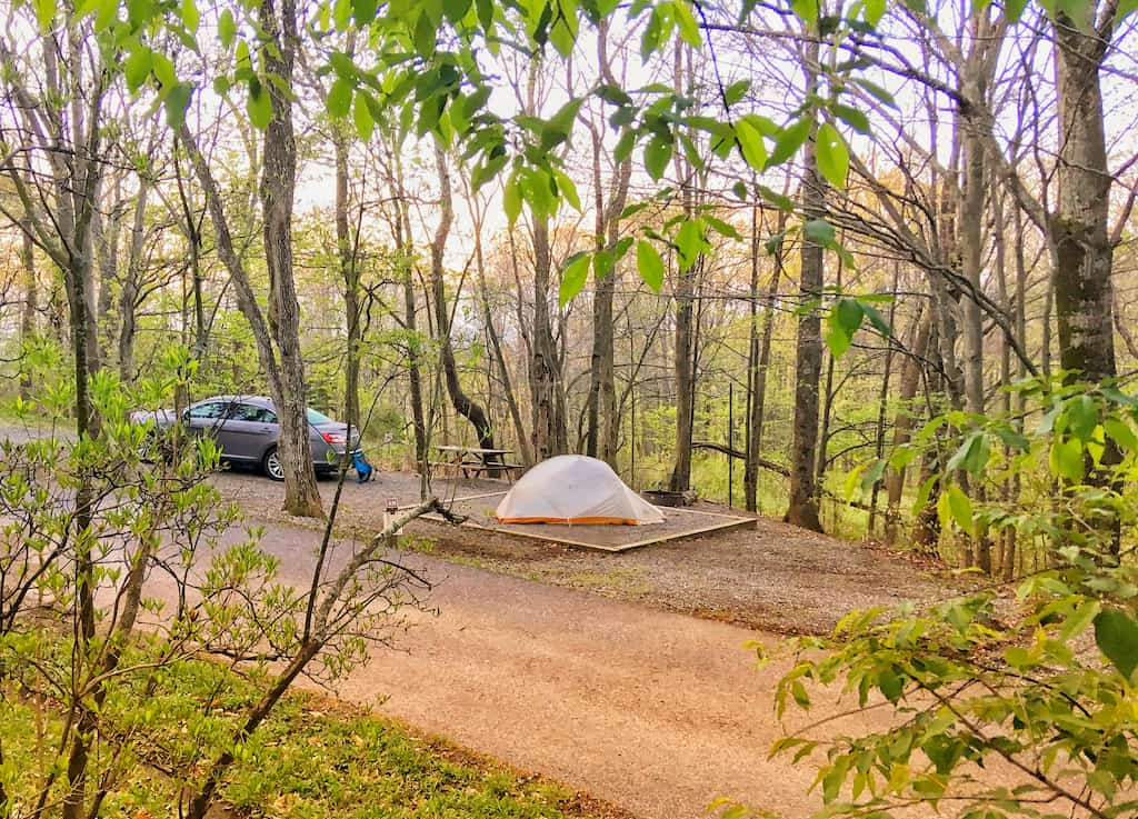 Hickory Ridge Campground in Grayson Highlands State Park in Virginia.