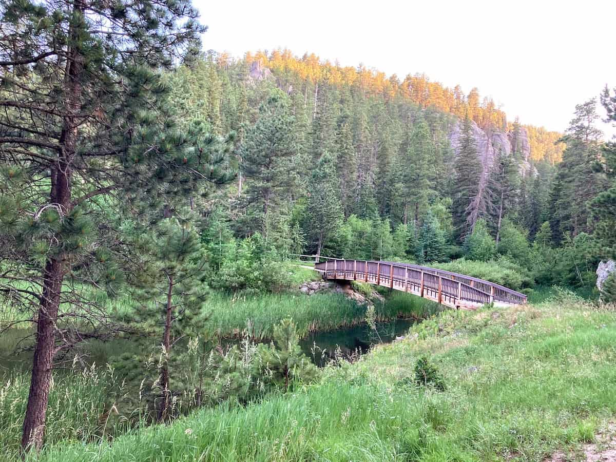 Part of the path around Horsethief Lake in the Black HIlls of South Dakota.
