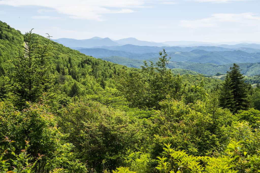 mountain views in Grayson Highlands State Park in Virginia.