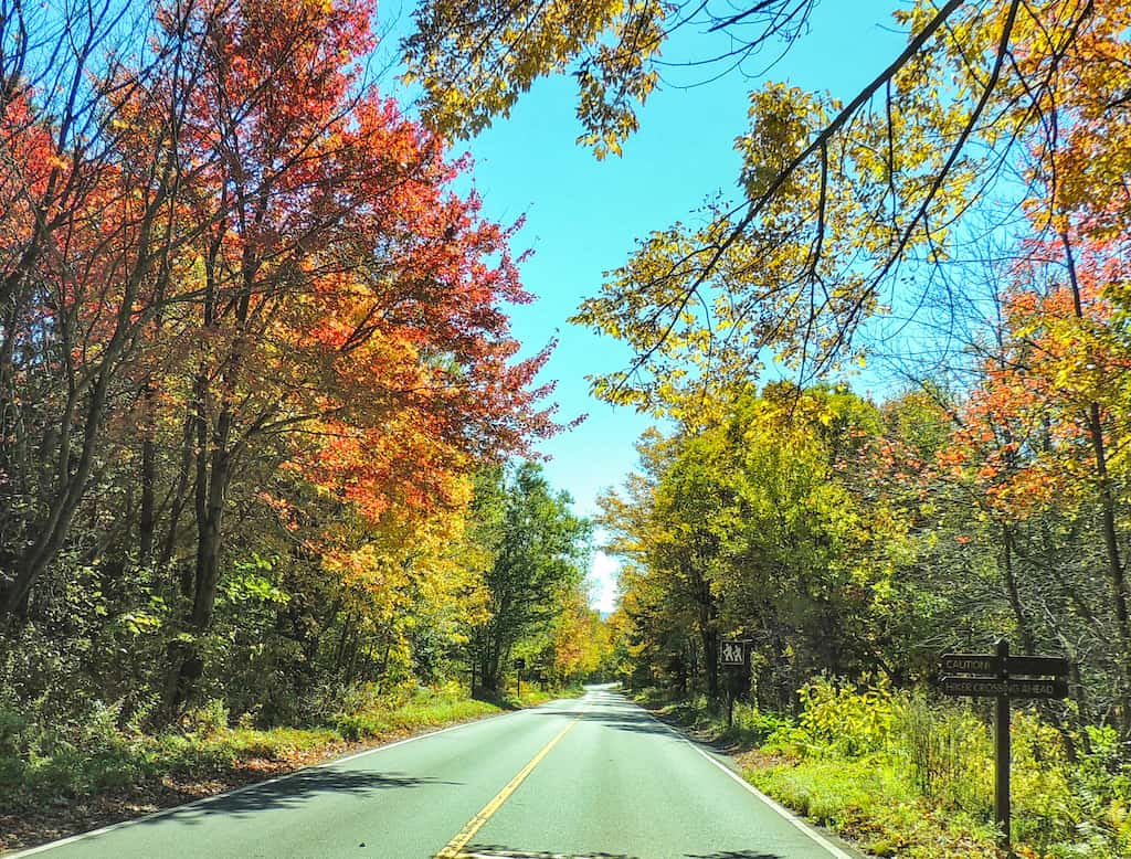 The road to the top of Mt. Greylock in the fall.